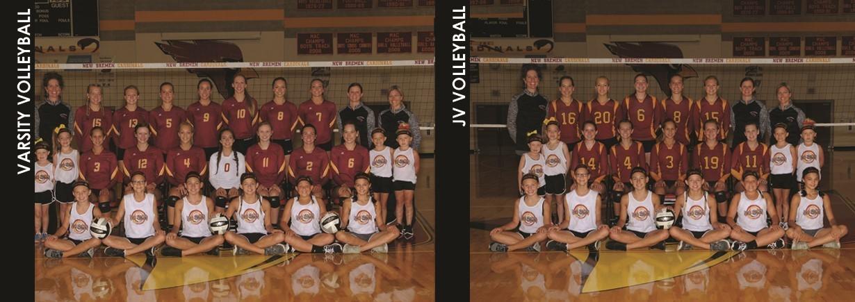 2017 High School Volleyball Teams